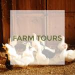 Farm_Tours